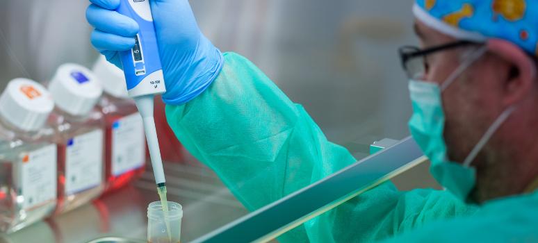 medicina regenerativa ingeniería de tejidos