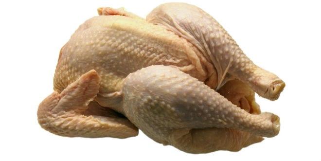 El consumo de pollo en la adolescencia previene el cáncer de colon
