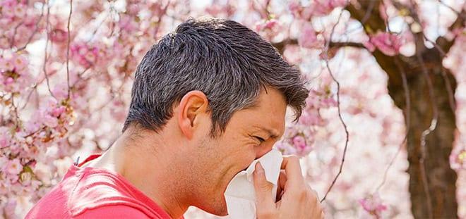 Riniitis alergica