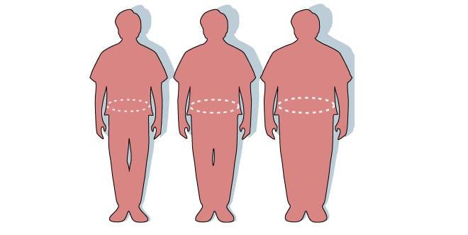 Análisis genético de obesidad. Estudios