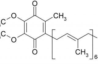 coenzimaQ-fibromialgia