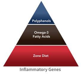 Dieta de la zona , dieta antiinflamatoria para eliminar la grasa