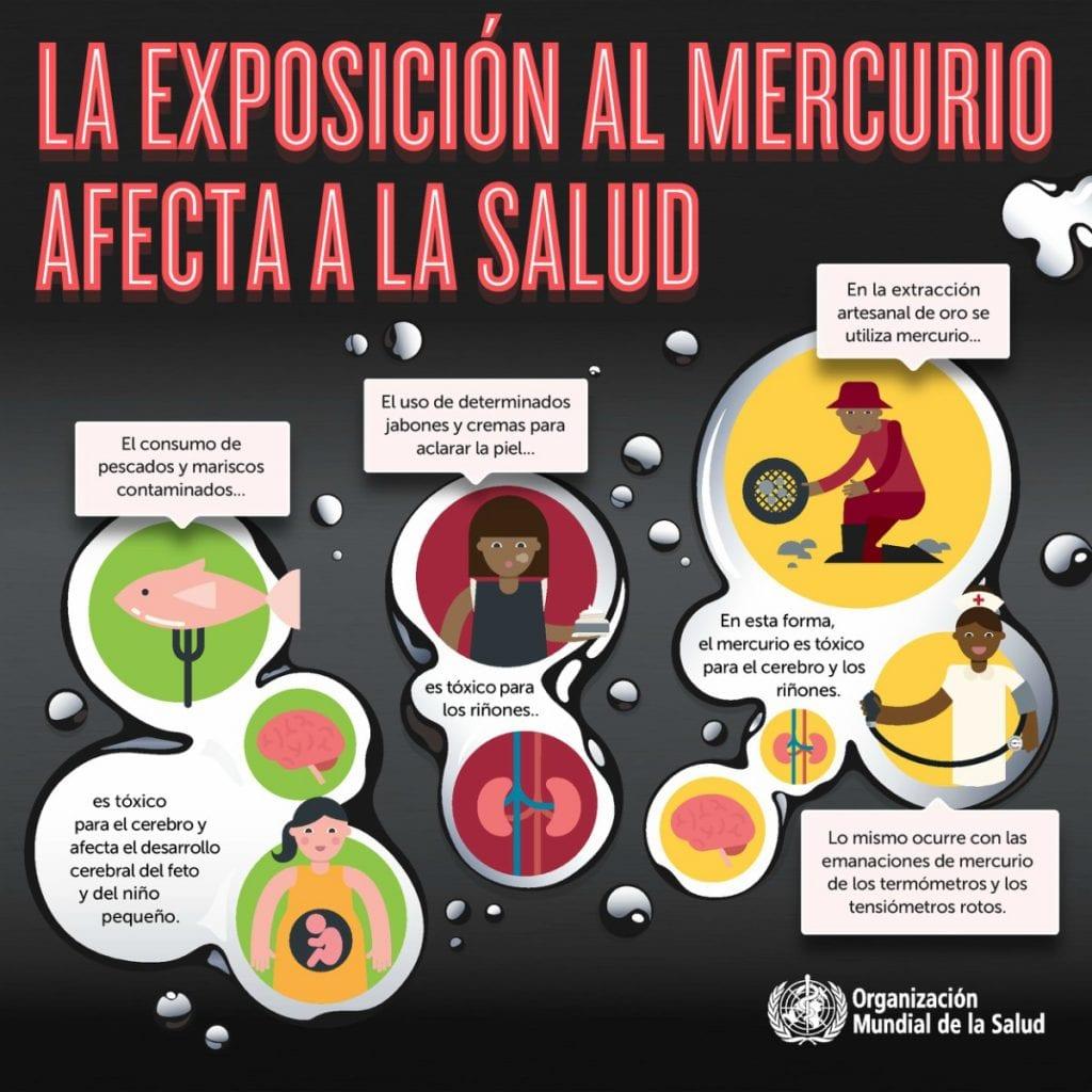 Riesgos del mercurio para la salud